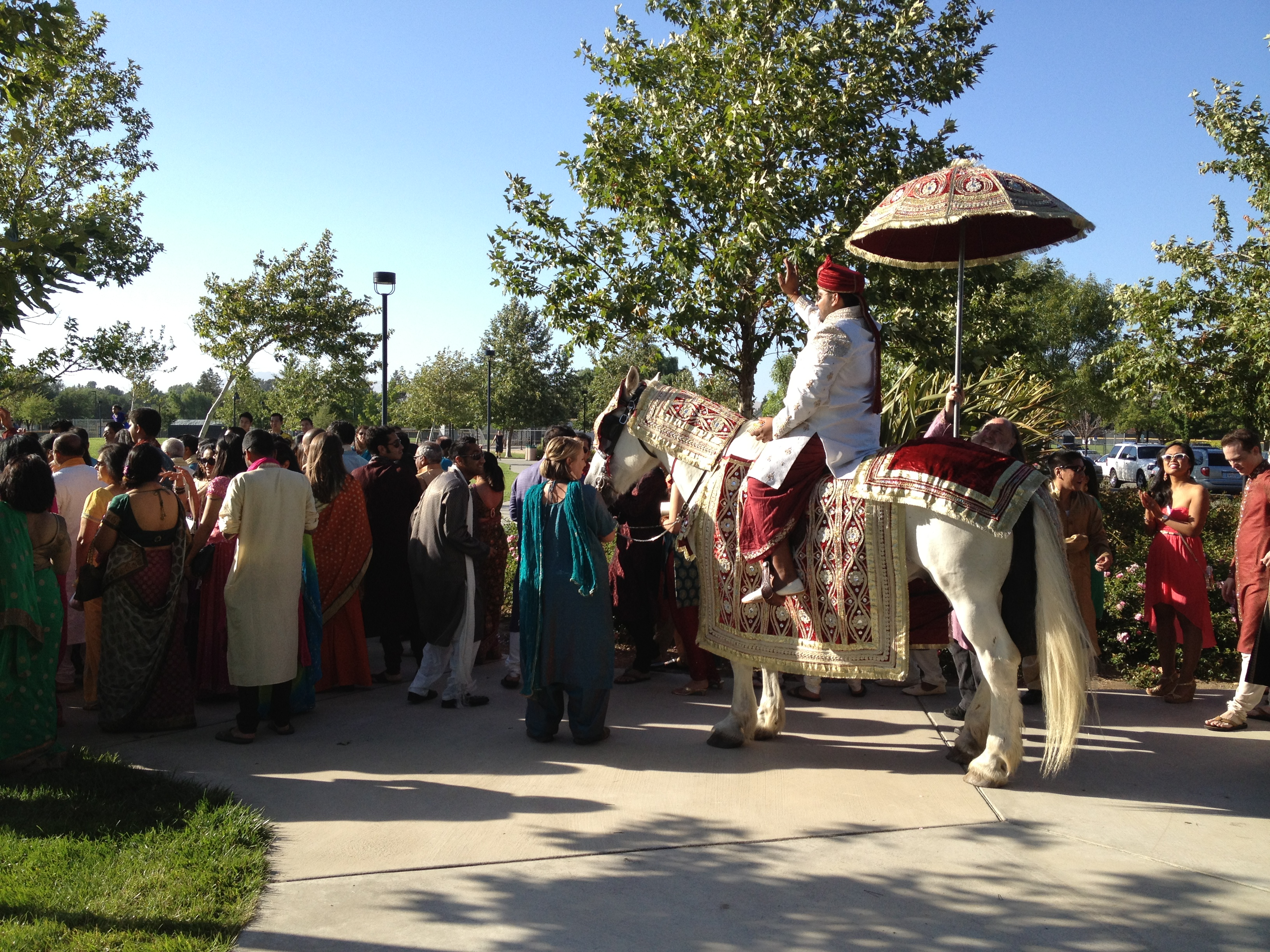South Asian Wedding, Grooms's Procession -Baraat