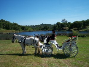 Victoria Carriage, a smaller elegant carriage for weddings