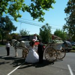 La Quineanera and escort with white vis-a-vis carriage