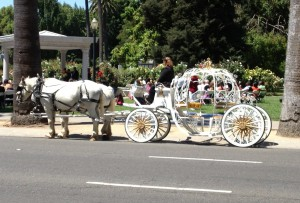 Cinderella carriage at the Capital Rose Garden, Sacramento CA