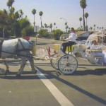 white cinderella carriage crossing street with La Quinceanera and her escort